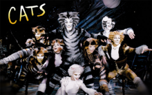 Wikia-Visualization-Main,catsmusical