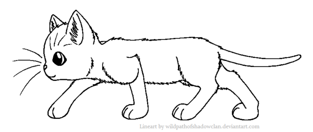 File:Shorthaired Warrior Lineart by WildpathOfShadowClan.png