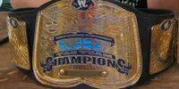 NESE East Tag Team Championship