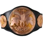 File:NO-CW Tag Team Championship.jpg