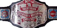 NAW Television Championship