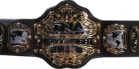 TNXA World Heavyweight Championship
