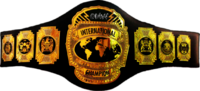 DMWinternationaltitlebelt2
