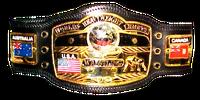 NESE World Championship