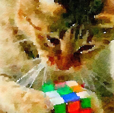 File:Pepper with cube painting.jpeg