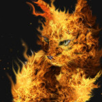 File:Firecat-150x150.jpg