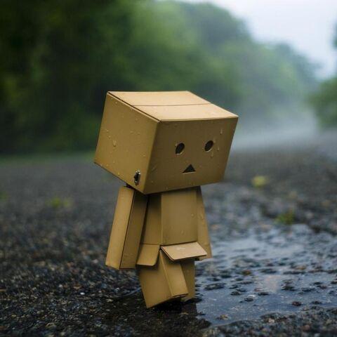 File:Sad Danbo.jpg