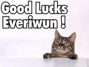 Good luck everiwun