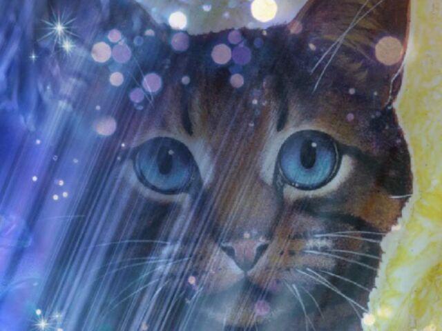 File:Warrior cats wallpaper 2.jpg