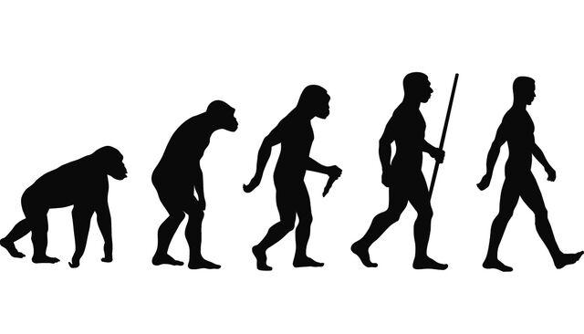 File:La evolución .jpg