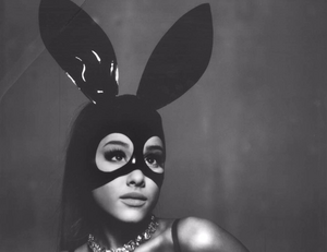 Ariana bunny
