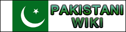 File:Pakistani Wiki Possible Wordmark.png