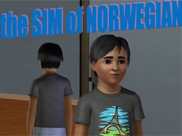 File:TheSIMofNorwegian.jpg