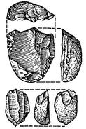 Iberomaurisien nucleus