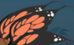 File:Butterfly Wings.png
