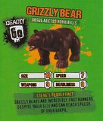 Deadly60Factsheet-Grizzly Bear