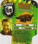 Deadly60Factsheet-Dukk-Billed Platypus