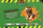 Deadly60Factsheet-Lion