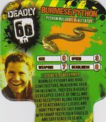 Deadly60Factsheet-Burmese Python