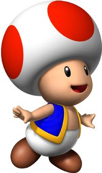 Toad-toad-6046375-938-1580
