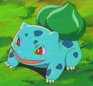 Bulbasaur Anime