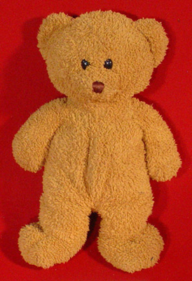 File:Wyatt teddy bear.jpg