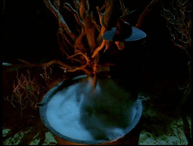 Ficheiro:Wicked witch.jpeg