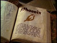 Phoenix-entry