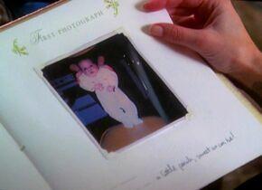 PipersBabyBook