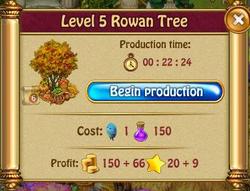 RowanP5