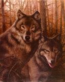 T-c-chiu-wolves-pair