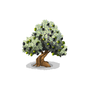 File:Tree-Olive.png