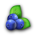 File:Ingredient-Blueberry.png