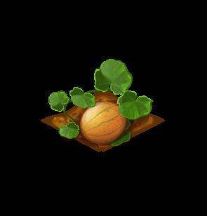 File:Crop-Cantaloupe.png