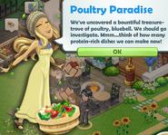 Poultry Paradise