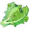 Ingredient-Backyard Broccoli