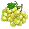 Ingredient-White Grape