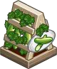Harvestable-Cucumber Trellis