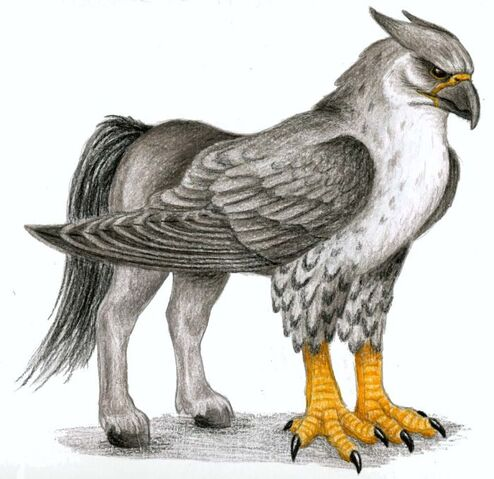 File:Hippogriff-mythical-creatures-28620890-700-679.jpg