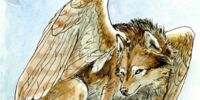 The Bounty Catching, Freedom Dreaming, Winged Wolf Phenomenon