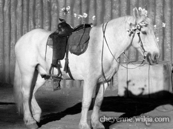 File:Cheyenne-glorythehorse-renegades.jpg