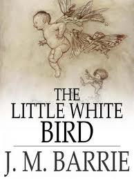 File:White bird.jpg