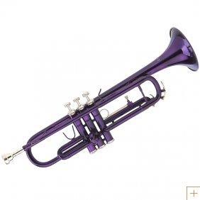 File:Trumpet purple.jpg