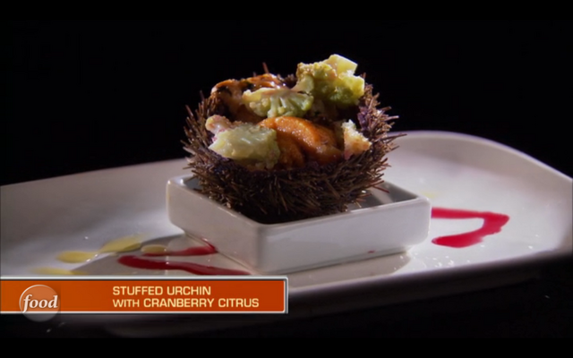 File:Wayne's Stuffed Urchin.png