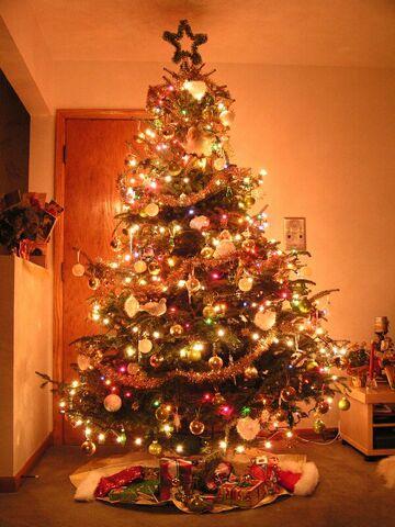 File:Christmas-tree-lights1.jpg