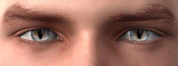 Warriorborn eyes