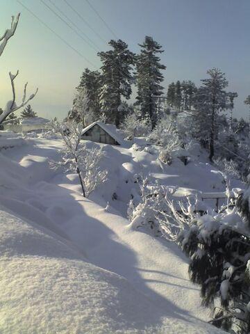 File:In winter.jpg