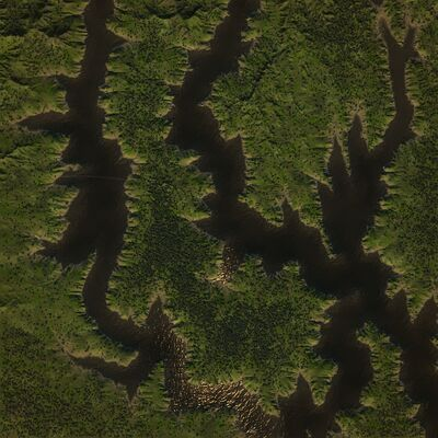 Overhead - Grassy Marshland