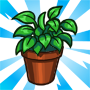 House Plant-viral