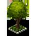 Shade Tree 2-icon